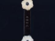 【已售】龙韵特价黑檀二胡9479 姑苏春晓